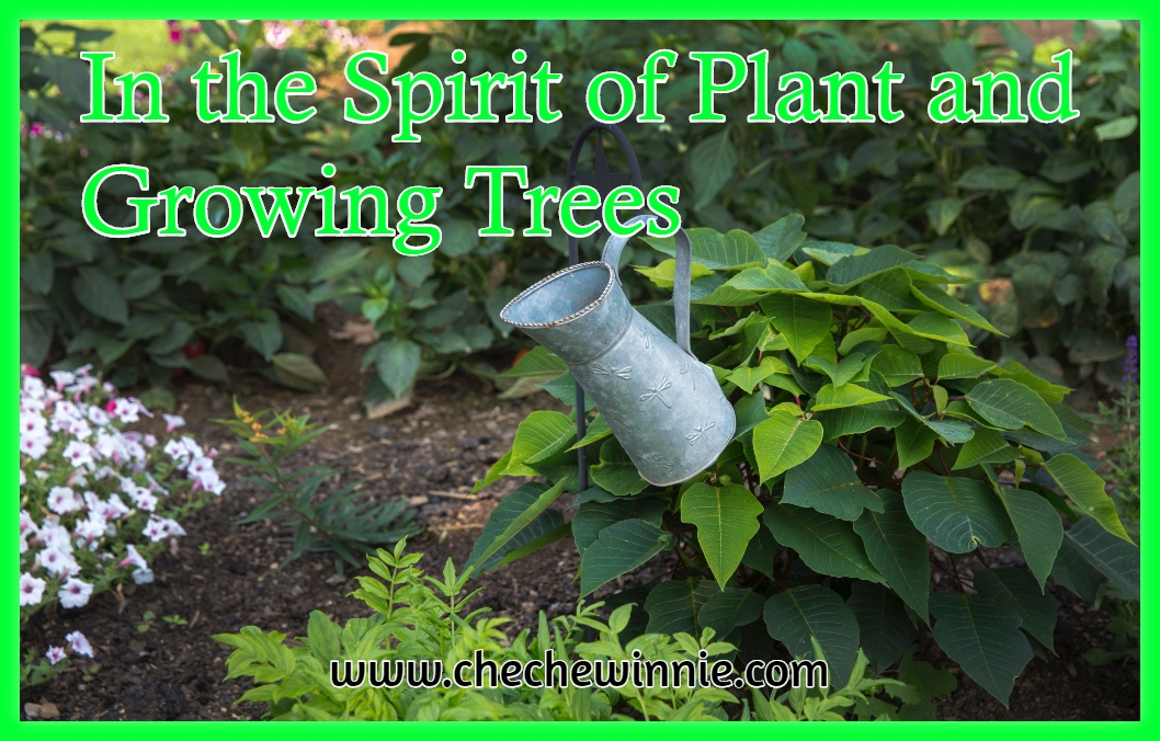 In the Spirit of Plant and Growing Trees