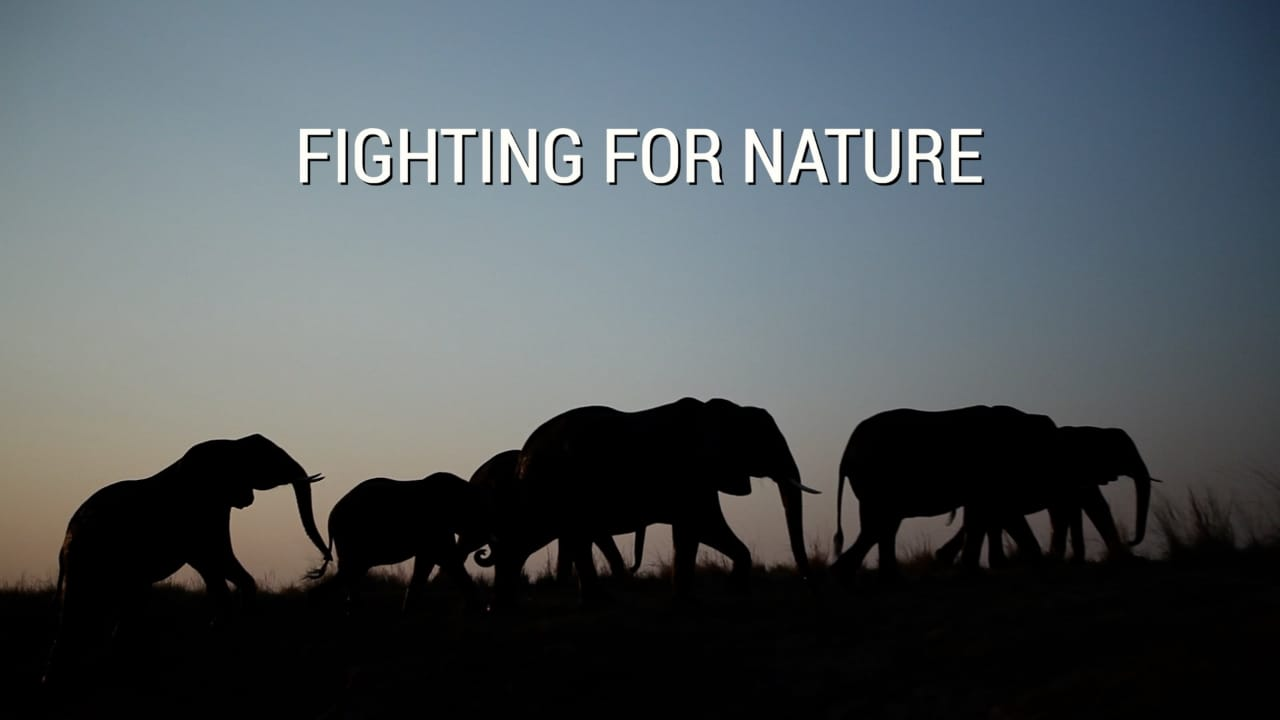 Fighting For Nature