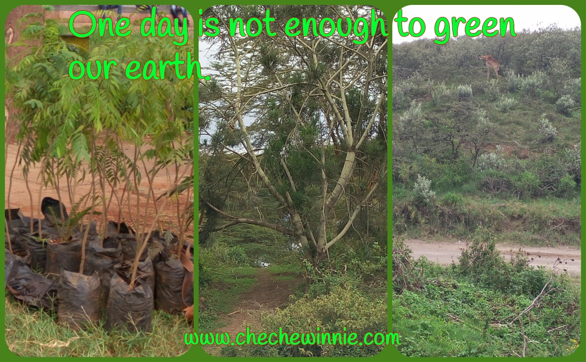 One day is not enough to green our earth.