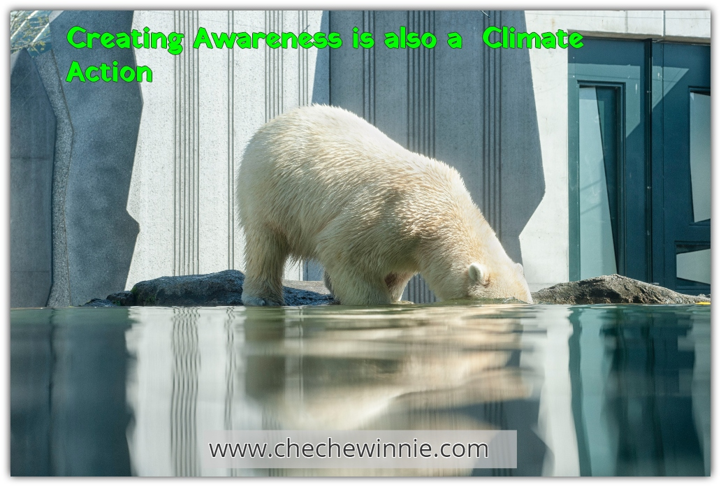 Creating Awareness is also a  Climate Action